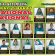 Hebat! Dua Pekan Pembelajaran, MTsN 1 Kota Malang Raih 22 Prestasi Bergengsi